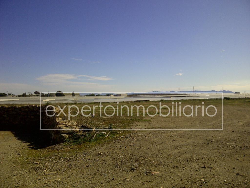 Almería-20120129-00035